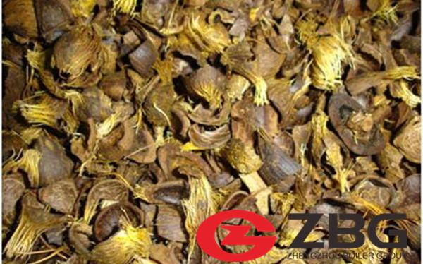 200 tph 105 bar cfb boiler fire palm kernel shell in Thailan