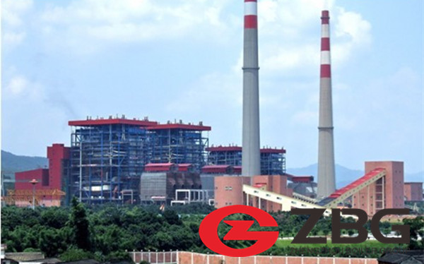 6MW Biomass Power Plant How Much Will it Cost.jpg