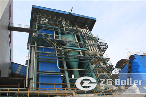 Biomass fired steam power generation boiler